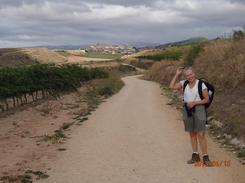 The Camino winding its way to the next town