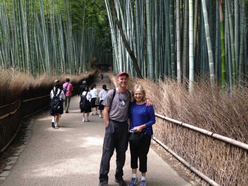 The bamboo grove was like a magic forest