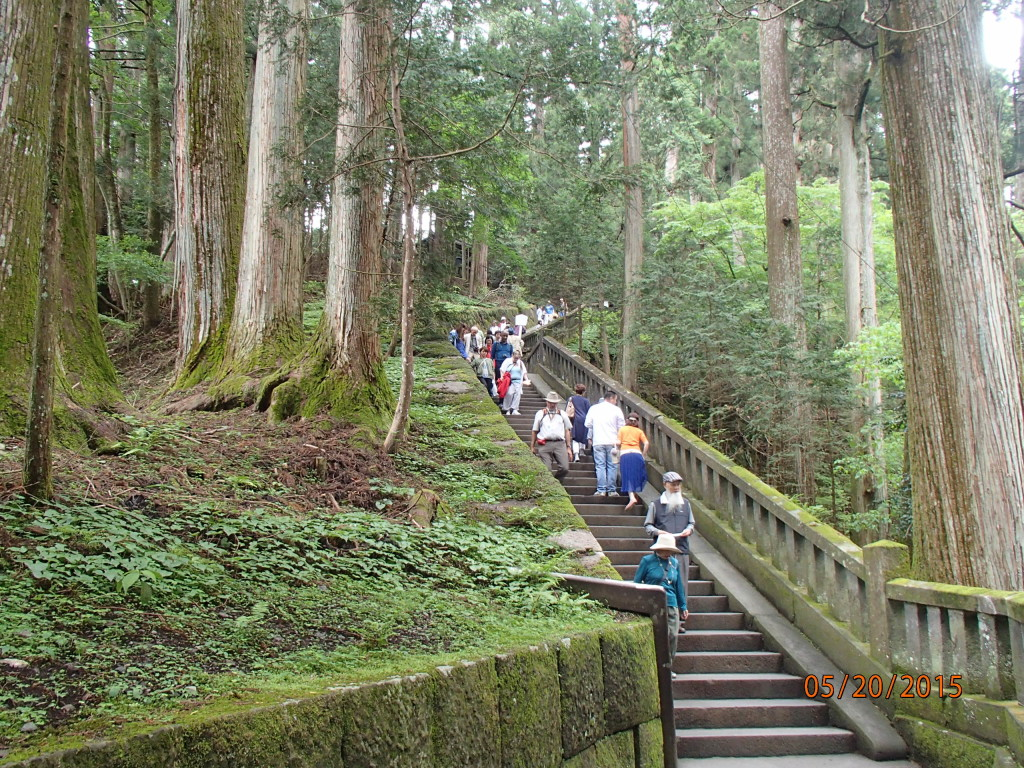 Moss lined trail to the temples in Nikko