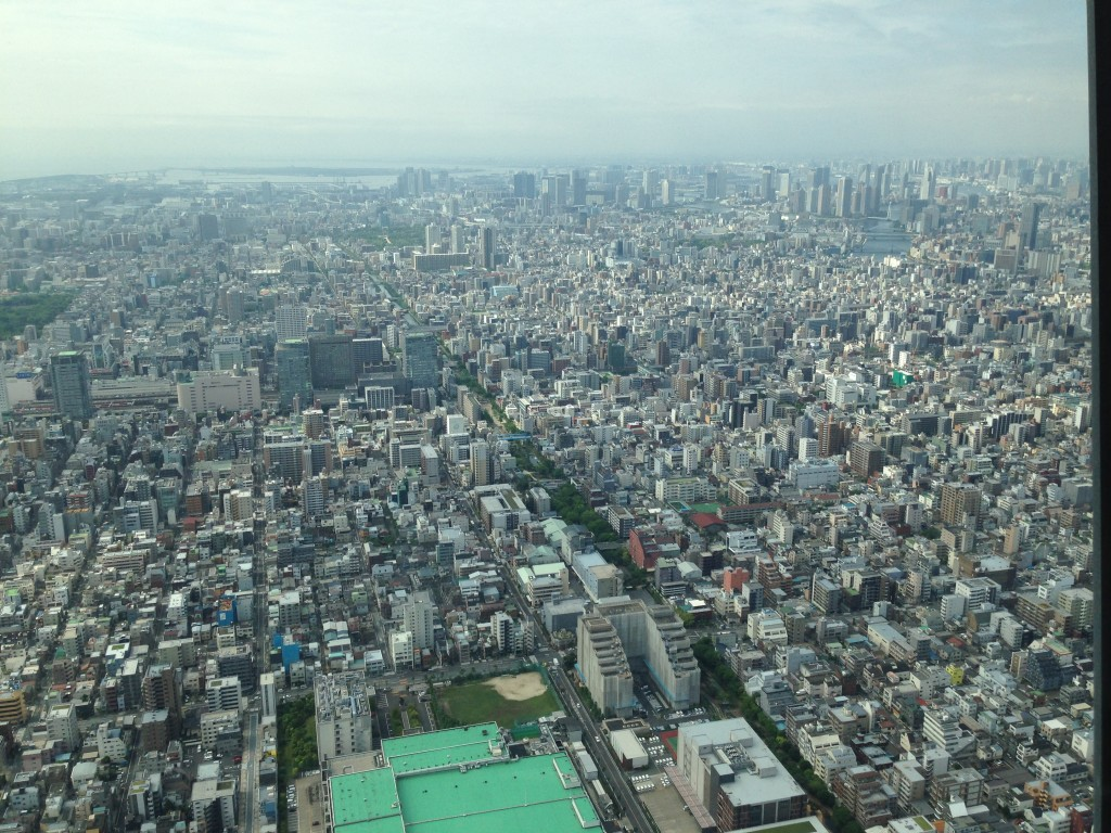 Pat's view from the Sky Tree observation tower in Tokyo