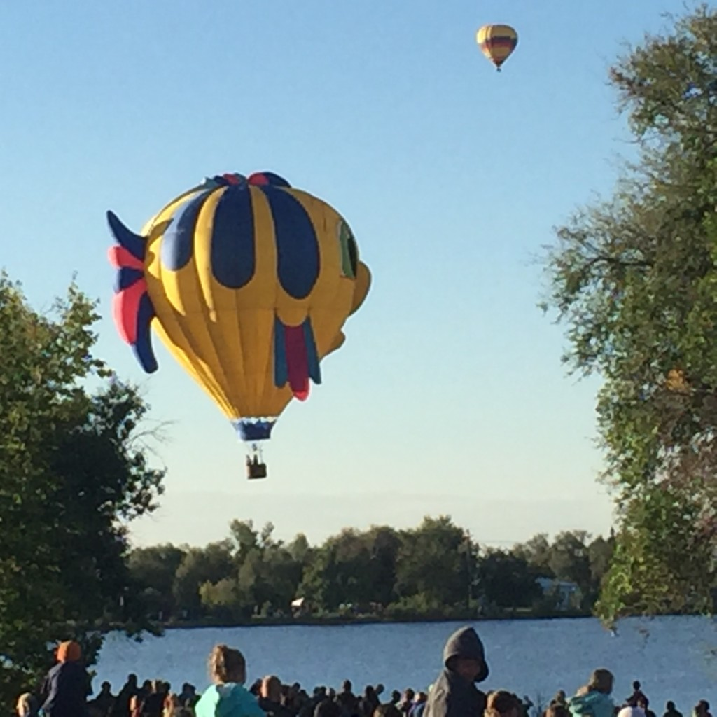 A fish shaped balloon drifts over the lake  before dipping in.