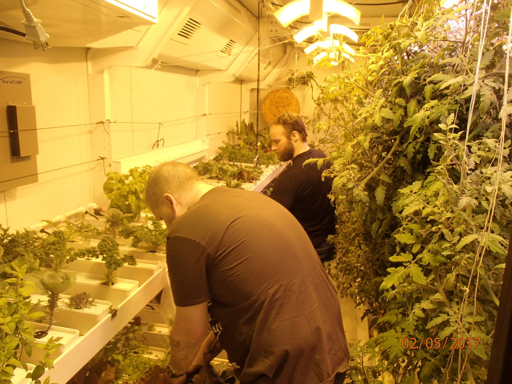 The grow room at the South Pole for fresh veggies
